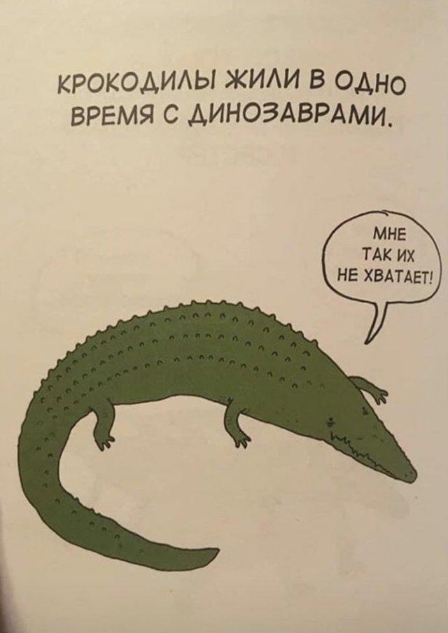 Грустные факты о животных Брука Баркера - крокодил