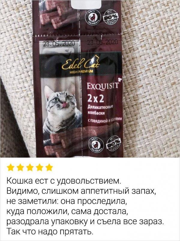 Отзыв о корме для котов