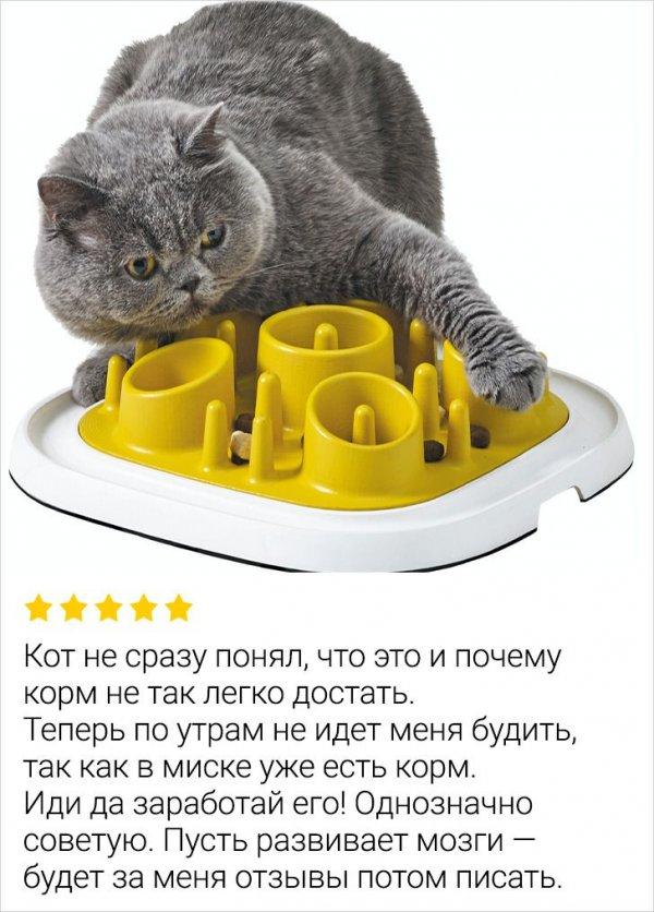 Отзыв про миску