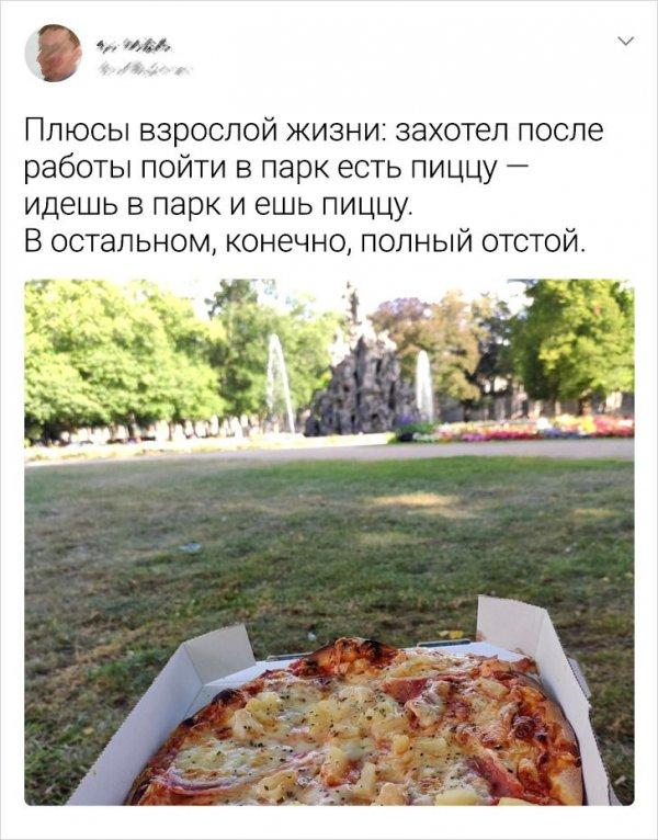 Твит про пиццу