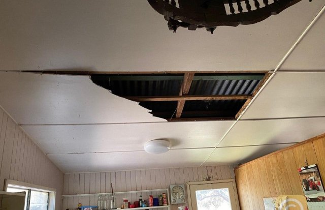 Дэвид Тейт увидел, как питоны проломили крышу в его доме