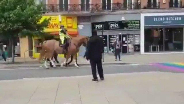 Лошади не хотят наступать на флаг ЛГБТ