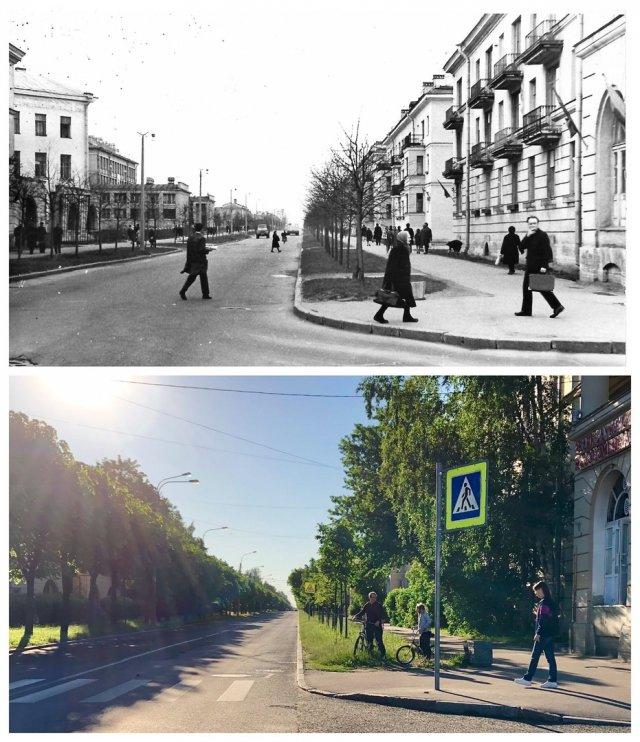 Ленинградская улица в Пушкине.1972 и 2020 год.