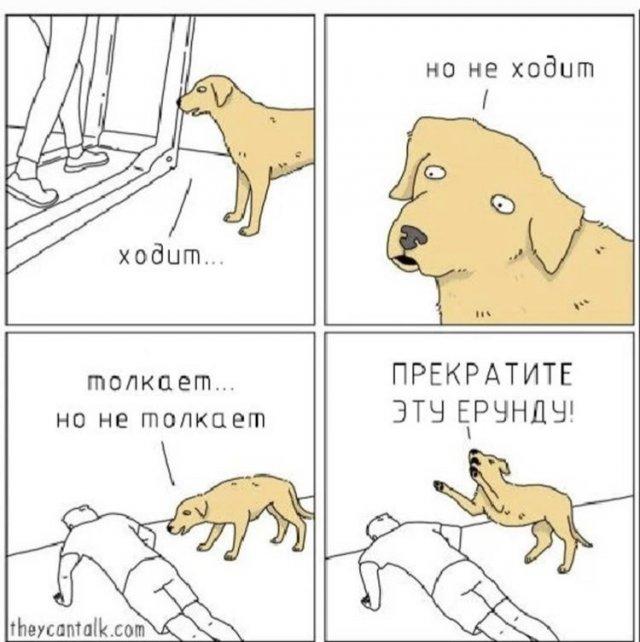 Шутка про собаку