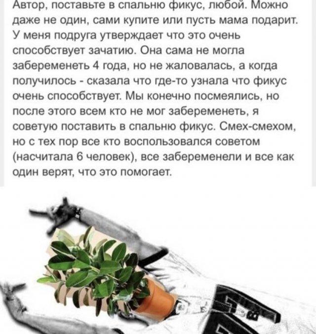 Юмор про растения