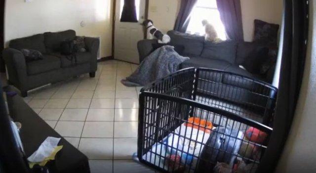 Камера наблюдения сняла нечто очень странное в доме у женщины