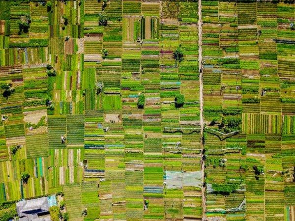 Деревня Тра Ке во Вьетнаме