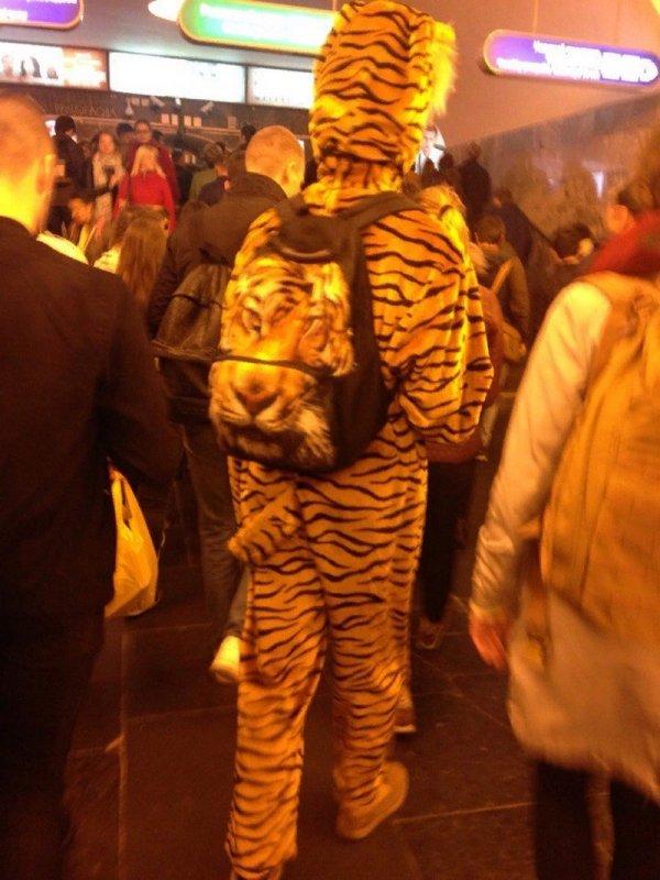 мужчина в костюме тигра