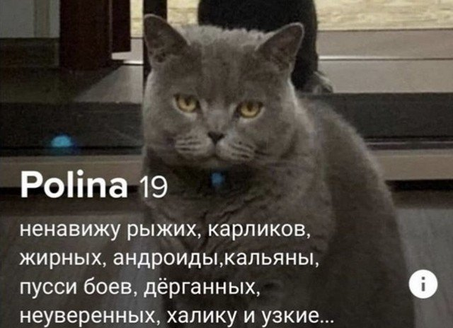 Полина из Tinder ищет любви