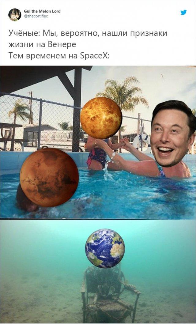 Шутки и мемы про признаки жизни на Венере