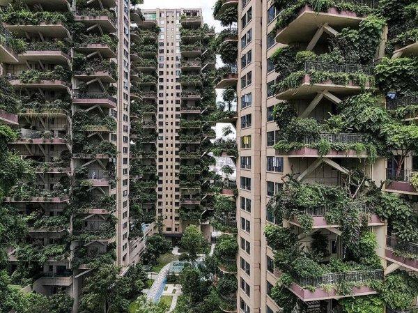 Жилой комплекс Qiyi City Forest Garden, Чэнду, Китай
