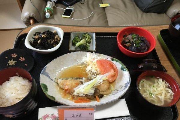 Лосось с грибным соусом, лапша, рис, баклажан с мясом, брокколи, салат из хидзики.