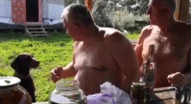 Умный пёс, помогающий хозяевам выпивать