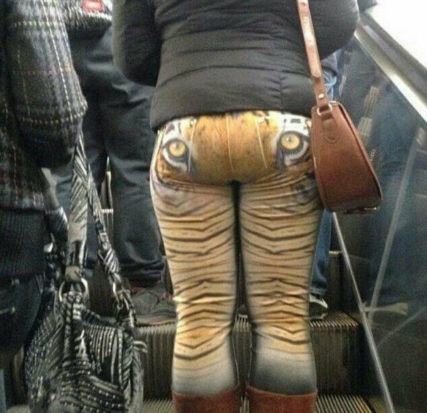 глаза тигра на штанах