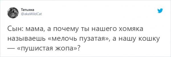 твит про хомяка