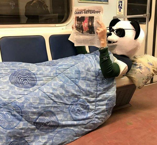 человек с головой панды
