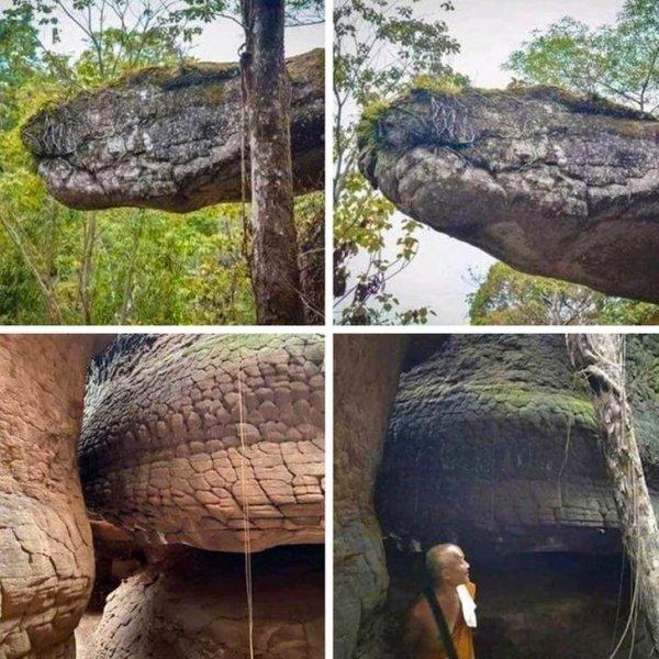 Пещера в Таиланде похожа на гигантскую окаменевшую змею