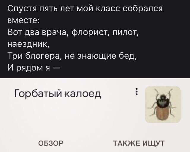 стих про жука
