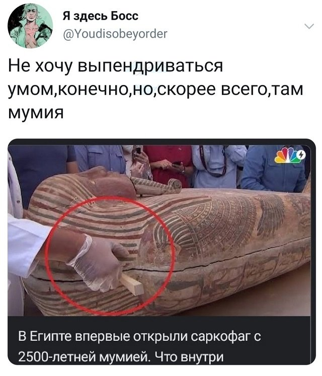 твит про саркофаг