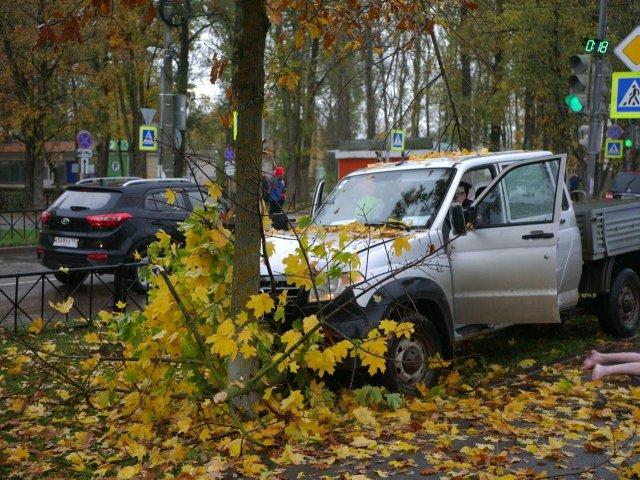 Погоня в Волхове - дерево остановило УАЗ Патриот