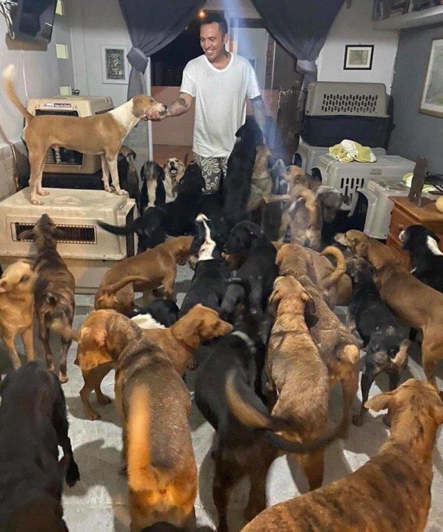 Рикардо Пиментель пристроил бездомных животных