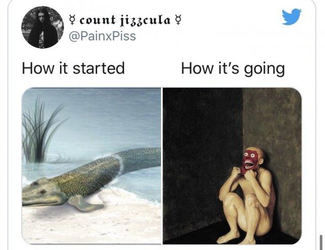 флешмоб How it started/How it's going об эволюции