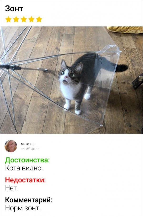 отзыв про зонт