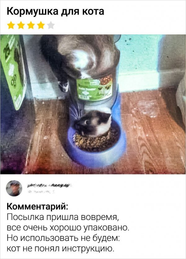 отзыв про кормушку для кота