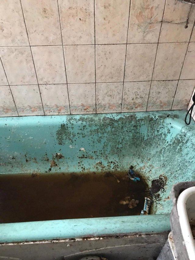 Клинеры показали результаты уборки в доме в графстве Камбрия  - убирают ванную