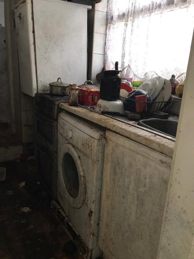 Клинеры показали результаты уборки в доме в графстве Камбрия  - моют кухню