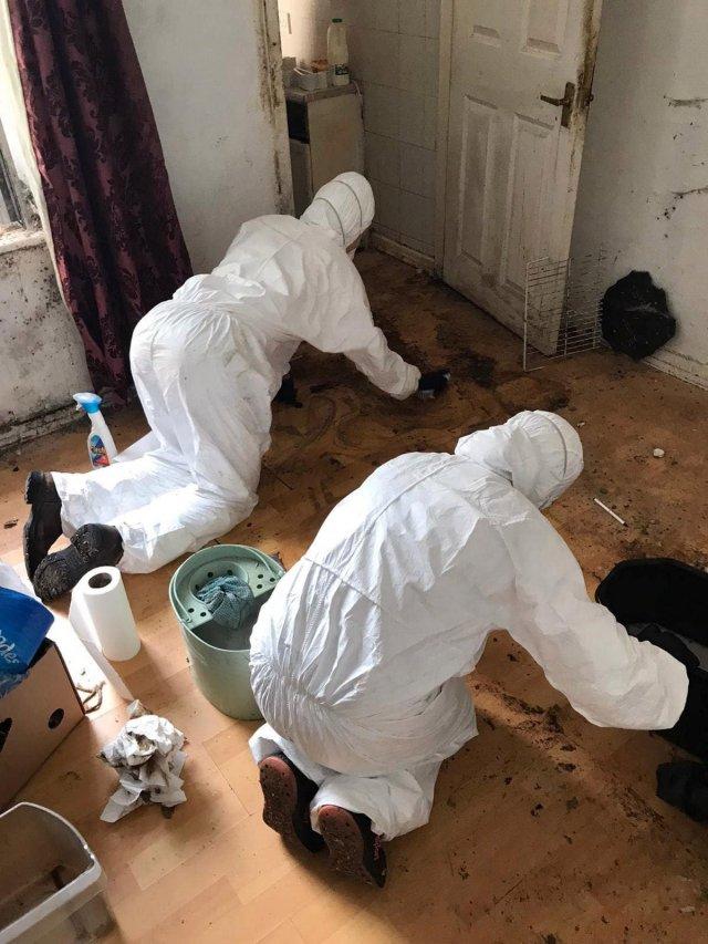 Клинеры показали результаты уборки в доме в графстве Камбрия - убирают пол