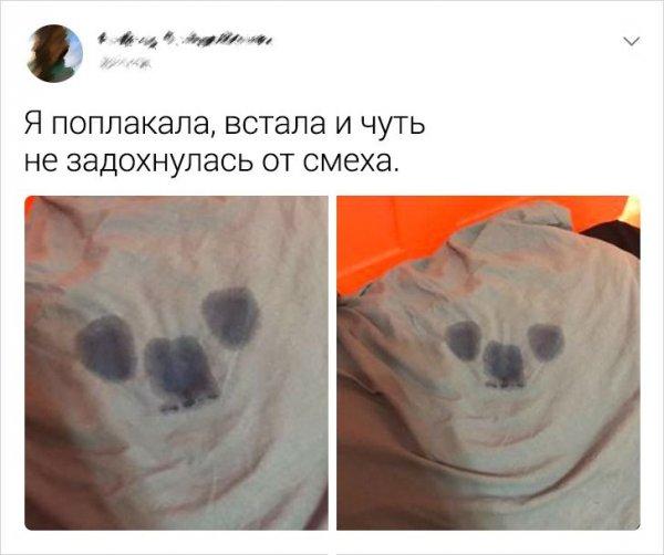 твит про отпечаток на подушке