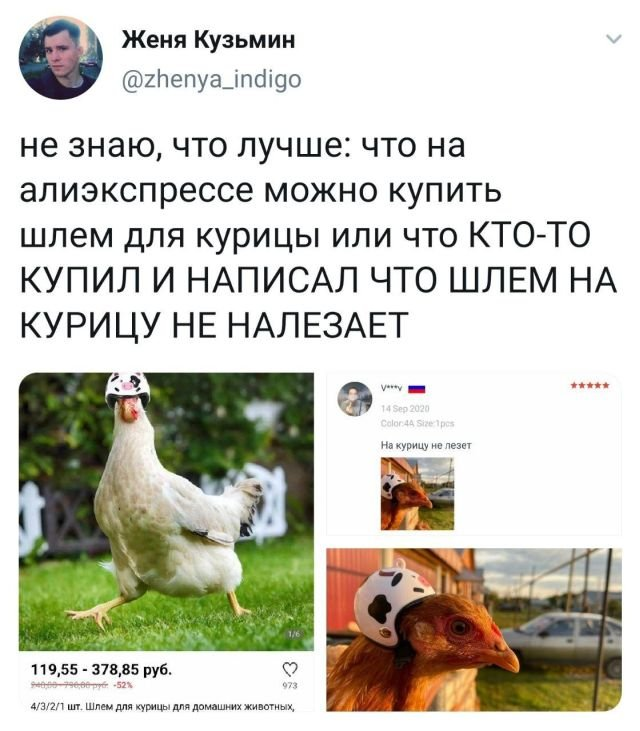 твит про шлем для курицы