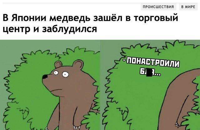 Медведь заблудился в ТЦ