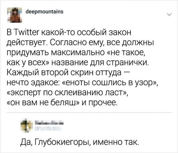 никнйемы в твиттере