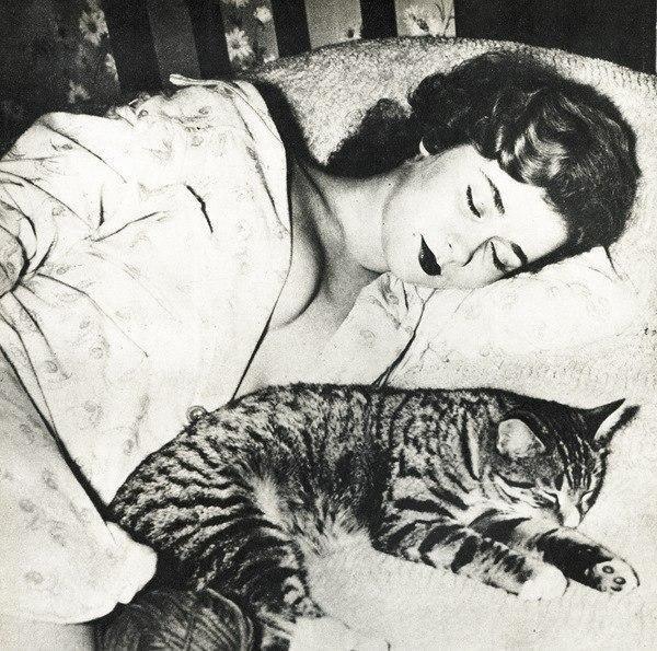 """""""Сон, прекраснейшее из наслаждений жизни, в отличие от других, не утомляет и не приедается"""". Цитата из книги Роджера Желязны"""