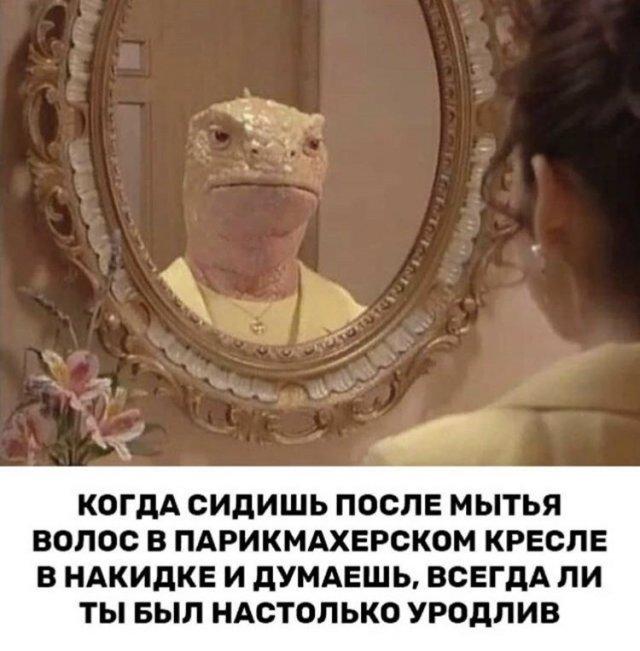 Юмор в зеркале