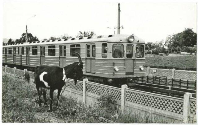 Святошинско–Броварская линия метрополитена, 1972 год, Киев