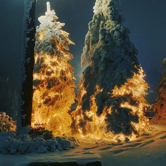 Звоните пожарным - елка горит