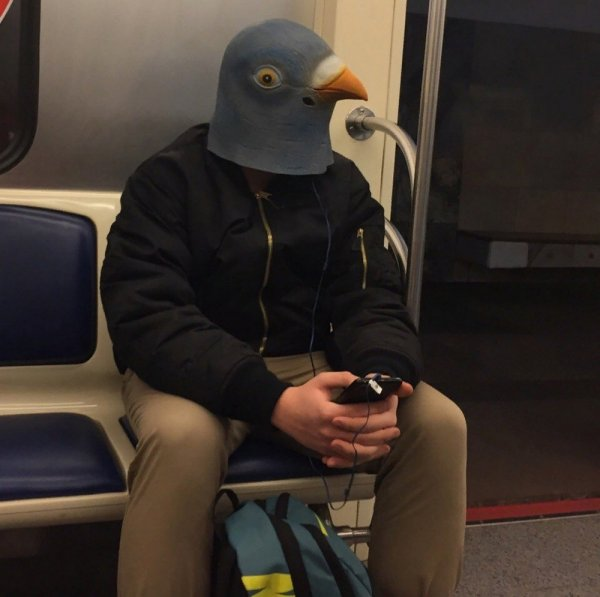 мужчина в маске голубя