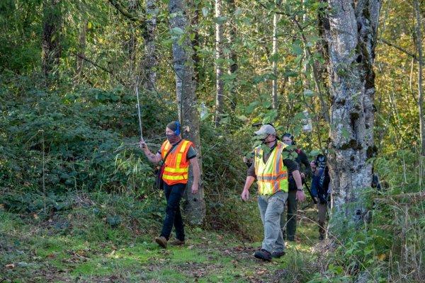 Энтомологи в лесу