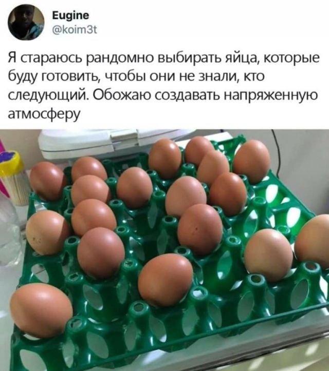 твит про яйца