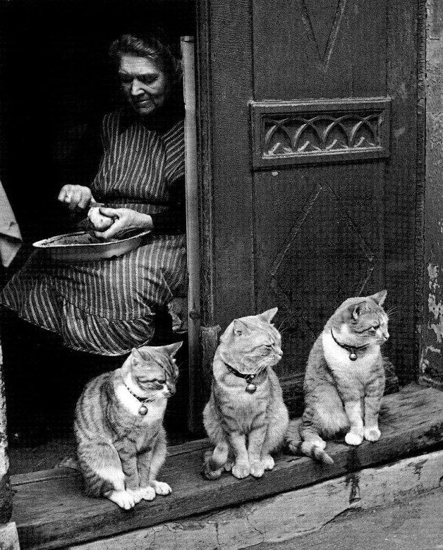 Семейный портрет. Любек, Германия, 1950 год