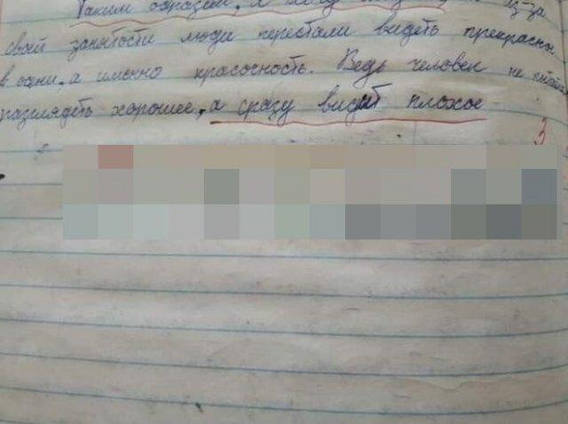 Учительница оставила некорректное и странное замечание под сочинением школьника