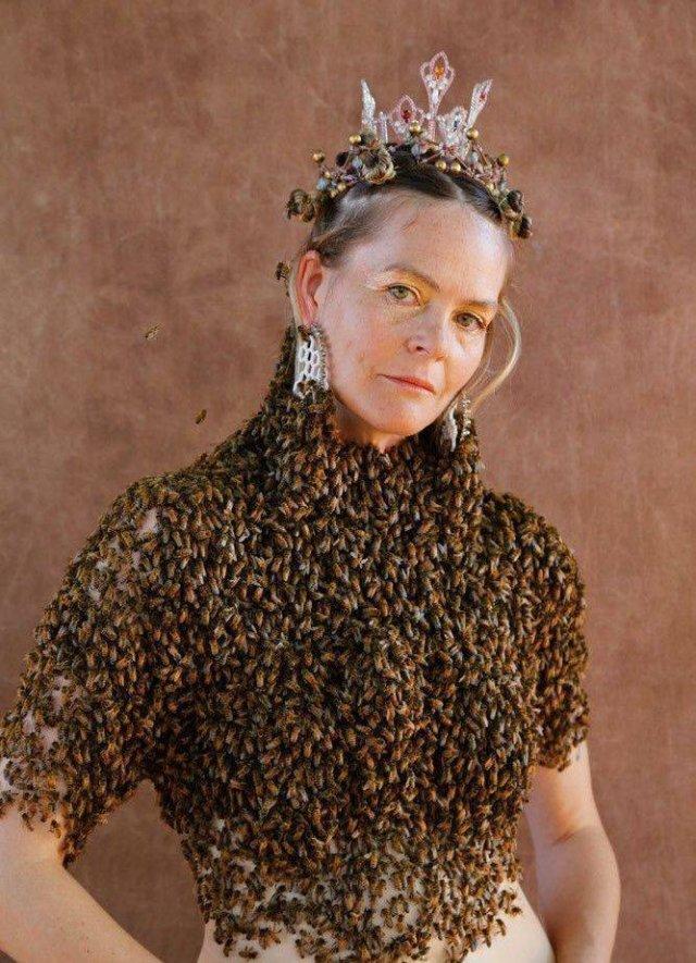 Много пчёл