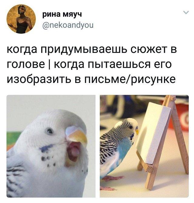 твит про рисунок