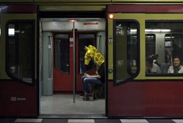 Жираф в метро