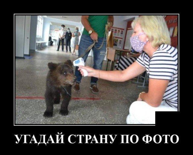203359_11_trinixy_ru.jpg