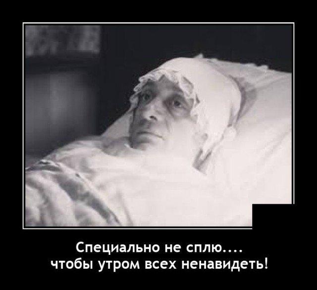 203359_17_trinixy_ru.jpg