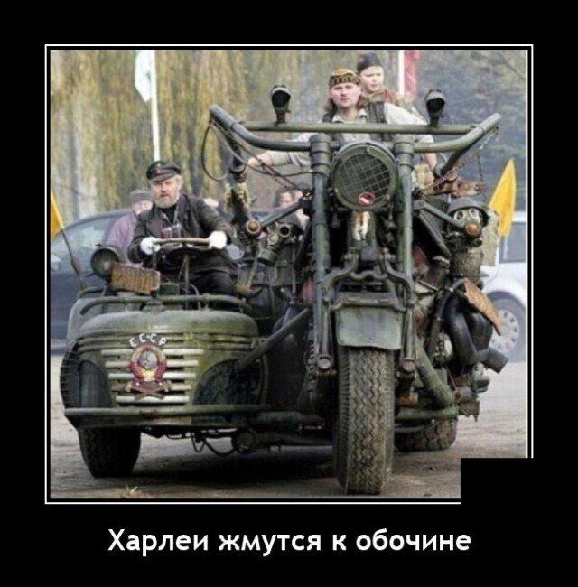 203359_19_trinixy_ru.jpg